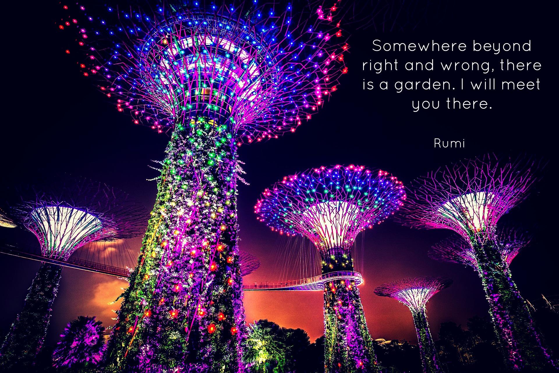 Rumi Copy